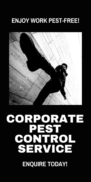 Corporate Pest Control Service to Enjoy Work Pest Free